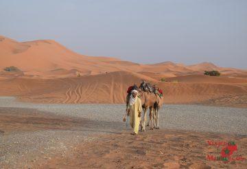 Merzouga: el desierto más famoso de Marruecos 6