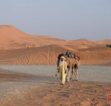 Merzouga: el desierto más famoso de Marruecos 2